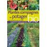 plantes compagnes du potager